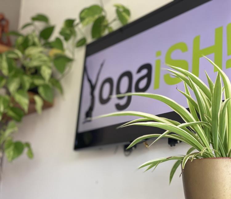 yoga home studio plants